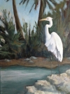 Egret in waiting