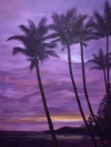 After the Storm, Queen Palms